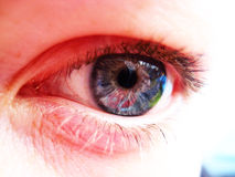 Closeup Eye Royalty Free Stock Photos