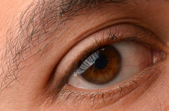Closeup of eye. Beautiful eye as a background close-up Royalty Free Stock Photos