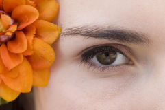 Closeup Eye and Flower. Closeup of Woman's eye and orange plastic flower Stock Image