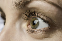 Closeup eye and iris of young woman royalty free stock photography