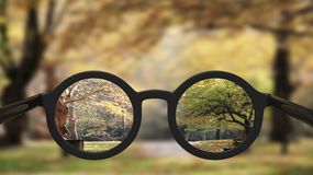 Closeup on eyeglasses with focused Royalty Free Stock Images