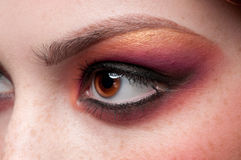 Closeup eyes make-up zone. Purple and golden Stock Photos