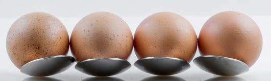 Closeup för ägg på metallskeden fotografering för bildbyråer