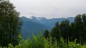 Closeup för bergsikt Royaltyfri Bild