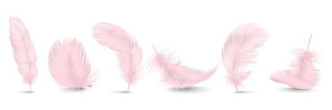 Closeup för fjäder för vektor som 3d realistisk olik fallande rosa fluffig snurrad fastställd isoleras på vit bakgrund Design royaltyfri illustrationer