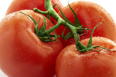Closeup för fyra tomater Arkivfoto