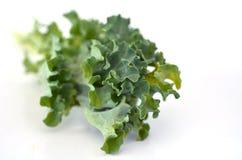 Closeup för grönkålgrönsakstudio på en vit bakgrund Royaltyfri Bild