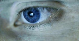 Closeup för mänskligt öga med reflexion för datorskärm stock video