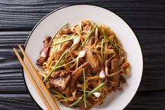 Closeup för nötköttChow Fun Noodles Pan-Fried Ho rolig Cantonese maträtt på plattan på tabellen horisontalb?sta sikt arkivbild