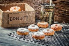 Closeup of falling powder sugar on donuts Royalty Free Stock Photography