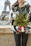 Closeup on fashion-monger with Christmas tree in Paris, France Royalty Free Stock Images