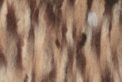 Closeup felted wool in brown shades Stock Photos