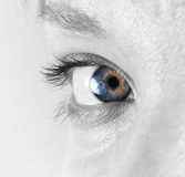 Closeup of the female eye Royalty Free Stock Image