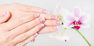 Closeup of female hands and fingers manicured Royalty Free Stock Images