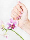 Closeup of female hands and fingers manicured Stock Photos