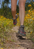 Closeup of female legs jogging on a trail. Closeup of female legs jogging on a trail with yellow flowers Stock Image