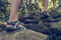 Closeup of female legs wearing sandals ascending forest staircase. Stock Image