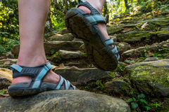 Closeup of female legs wearing sandals ascending forest staircase. Royalty Free Stock Image