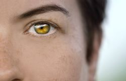 Closeup of a female model`s eye showing slight freckles on her skin stock image
