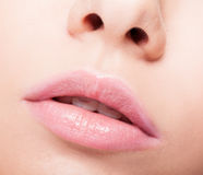 Closeup of female open mouth with pink lips and brackets Royalty Free Stock Image