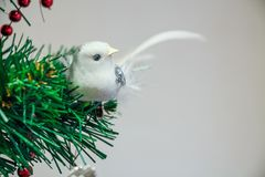 Close up Christmas toy of white bird on tree stock photography
