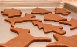 Closeup of festive gingerbread biscuits ready to baked Royalty Free Stock Image