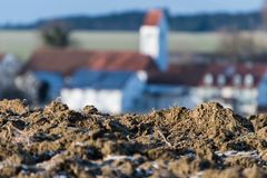 Closeup of a field with village in background royalty free stock photo