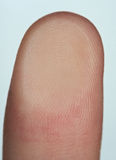 Closeup of finger print Royalty Free Stock Photography