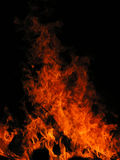 Closeup of a fire. With big flames stock photos