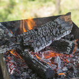Closeup of firewood burning in fire Royalty Free Stock Image