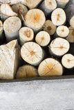 Closeup of a firewood texture Royalty Free Stock Images