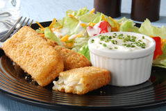 Closeup of fish sticks with salad Stock Image