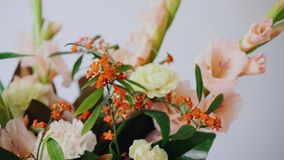 Closeup floral arrangement. Flowers in a glass vase. Woman picking fresh flowers to create beautiful bouquet in vase. Flower shop concept stock video