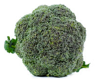 Head of fresh broccoli Royalty Free Stock Photography