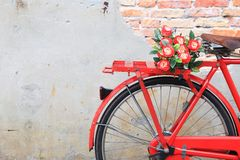 Closeup flower on saddle red bicycle  classic vintage Stock Image
