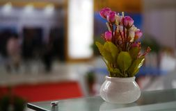 Closeup of flowers in a vase in exhibition Royalty Free Stock Photo