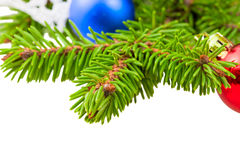 Closeup of fluffy needles Christmas tree Stock Photography