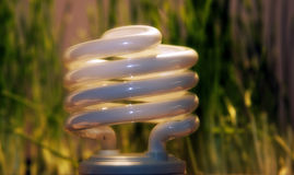 ECO Light. Closeup of fluorescent light and  grass Royalty Free Stock Photography