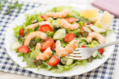Closeup of fork with fresh shrimp and berry salad Royalty Free Stock Photos