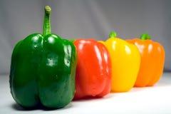 closeup four peppers straight wet Στοκ φωτογραφία με δικαίωμα ελεύθερης χρήσης