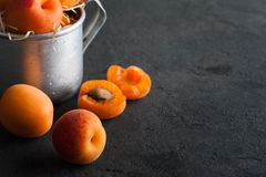 Closeup of fresh apricots in tin mug. On concrete background. Copy space for text Royalty Free Stock Images