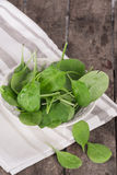 Closeup of fresh baby spinach in a bowl Stock Images
