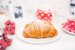 Closeup of fresh baked butter croissant, snack or breakfast Royalty Free Stock Photos
