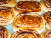 Closeup of fresh baked cinnamon buns. After baking in oven, with egg yolk, on baking paper Royalty Free Stock Photo