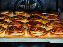 Closeup of fresh baked cinnamon buns. After baking in oven, with egg yolk, on baking paper Royalty Free Stock Image