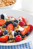 Closeup of fresh berries, yogurt and homemade granola Royalty Free Stock Images