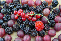 Closeup of fresh berry fruits Royalty Free Stock Image