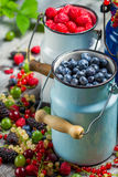 Closeup of fresh berry fruits in churn Royalty Free Stock Image