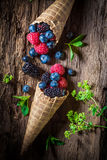 Closeup of fresh berry fruits ice cream on wooden bark as concept Stock Image