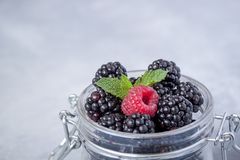 Closeup of fresh blackberries and a raspberry with a mint leaf in a glass jar on rustic table Royalty Free Stock Photo